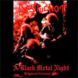 A Black Metal Night
